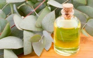 Эвкалиптовое и другие эфирные масла от грибка ногтей